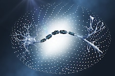 Neuron_225